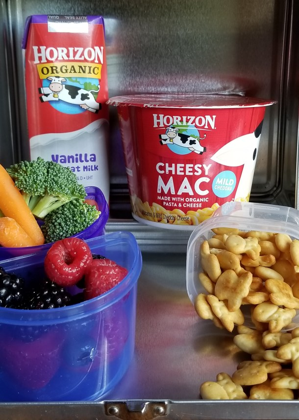 Time-Saving Tips and Creative Tricks for Lunchboxes Made Easy