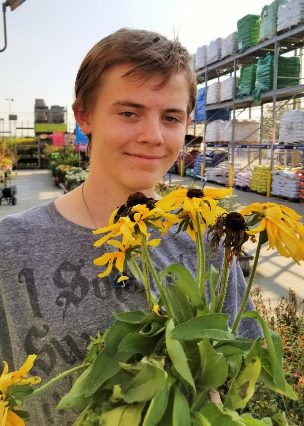 What Are Bee-Friendly Plants?   Plant a Bee Garden!