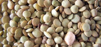 Consumers receiving a buffet of information on pulses