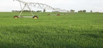 Improving the efficiency of irrigation