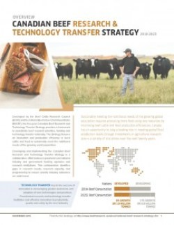 Overview_of_Cdn_Beef_Research_and_Technology_Transfer_Strategy_2018-2023_Dec1-16-232x300