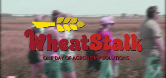 WheatStalk: Developing premium Winter Wheat varieties