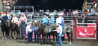 Trio come together last minute to win Stampede Team Cattle Penning competition