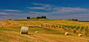 Soil carbon to be focus of Canadian Forage and Grasslands Conference
