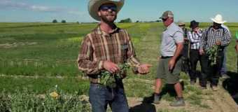 Farming Smarter: Should you apply Peat or Granular? — Medicine Hat Field Day