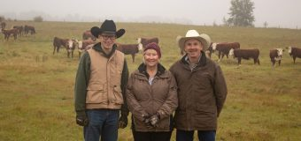 Radau family from Red Deer County wins ABP Environmental Stewardship award