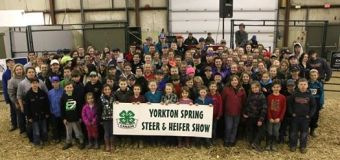 4-H members from across eastern Saskatchewan gather in Yorkton for Spring Steer and Heifer show