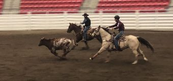 Youth enhance rodeo skills, compete and grow friendships at Stampede 4-H Rodeo