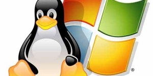 How to Access Linux Partitions from Windows : FIXED