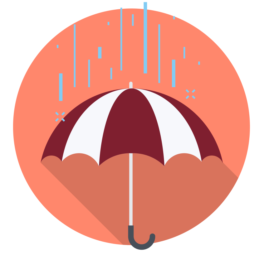 Coverage Plans Icon