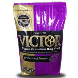 Victor_Premium