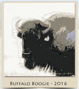 Buffalo Boogie 2016