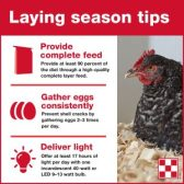 Flocktober Poultry Owners Workshops