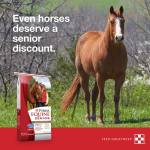Purina-Horse-March-Special