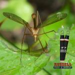 Spartan Mosquito Eradicator Russell Feed