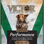 Victor_5lb_WEB_PERFORMANCE