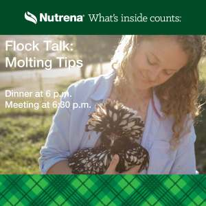 RSVP to the Russell Feed & Supply's free Flock Talk Molting Meetingon Thursday, October 21, 2021, in Saginaw.