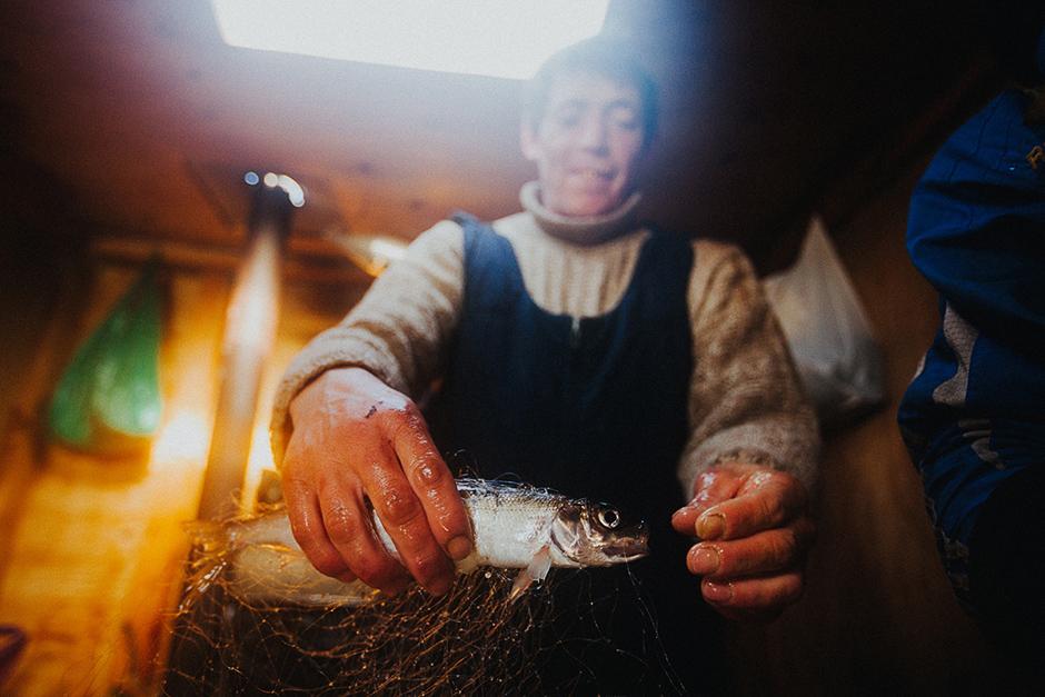 besplatno upoznavanje riba
