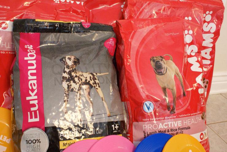 low price dog food
