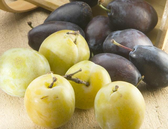 """Résultat de recherche d'images pour """"prunes"""""""