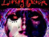 Living Colour – Shade (Megaforce)