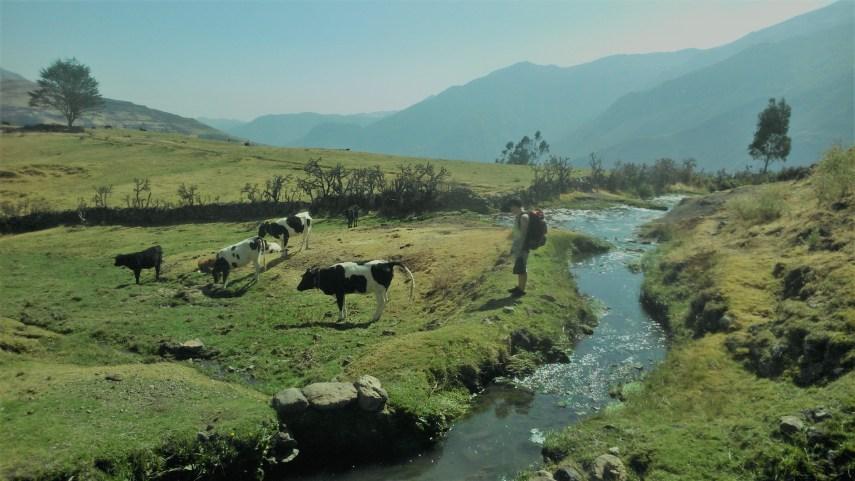 Observando el paisaje en Canta