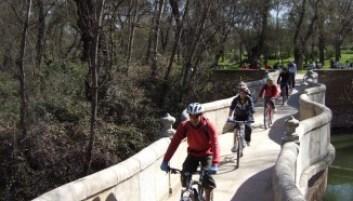 Puente De La Culebra En Casa De Campo Madrid Rutas Pangea