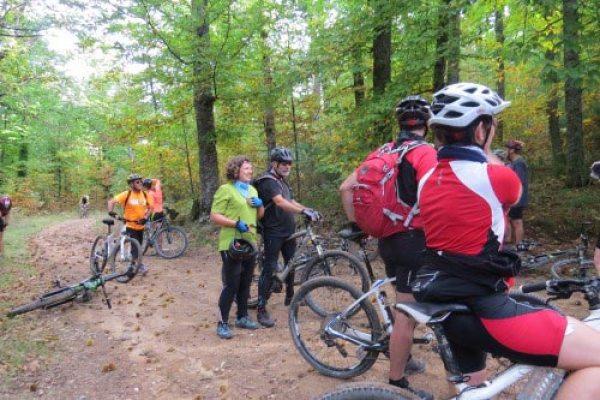 Bosques en bici