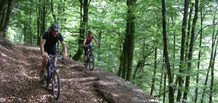 Navarra en bici de montaña