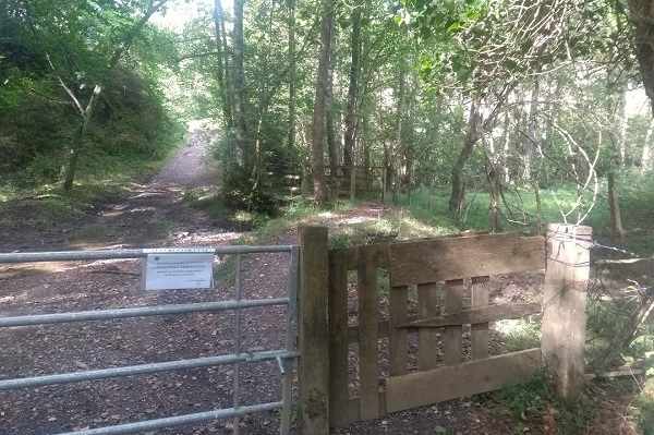 Portón con puente al fondo