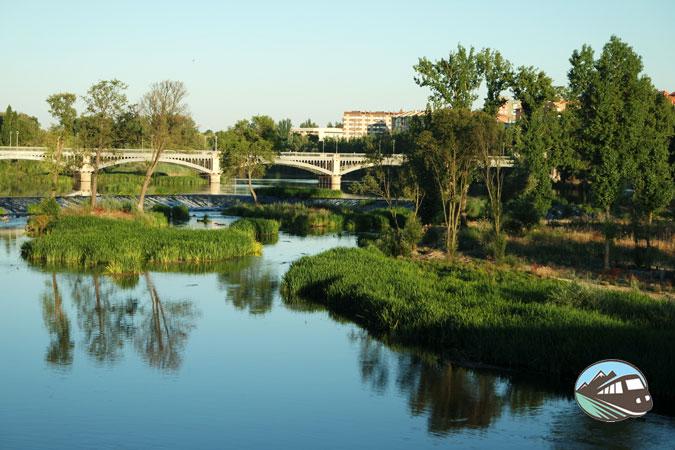 Orilla del Tormes - Salamanca