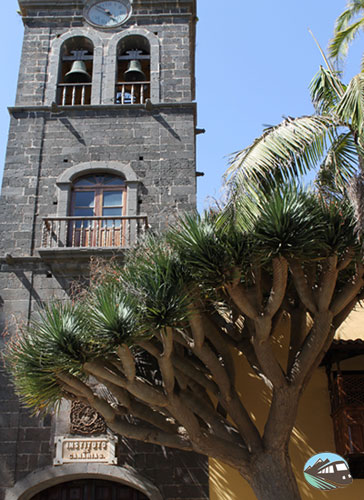Iglesia de Nuestra Señora de la Concepción – San Cristóbal de la Laguna