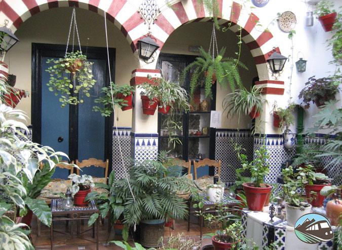 Patios cordobeses - Córdoba