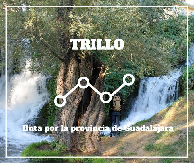 Trillo