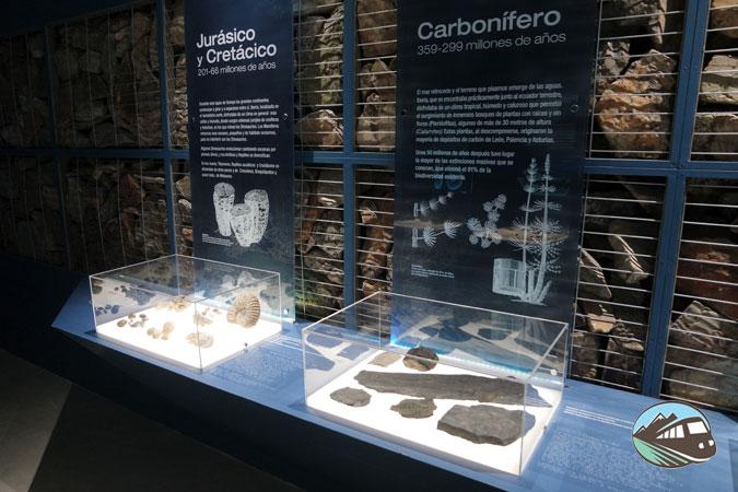 Museo de los Mares Antiguos - Monsagro
