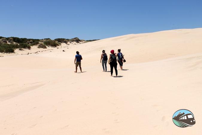 Como si fuera el Sahara – Bolonia
