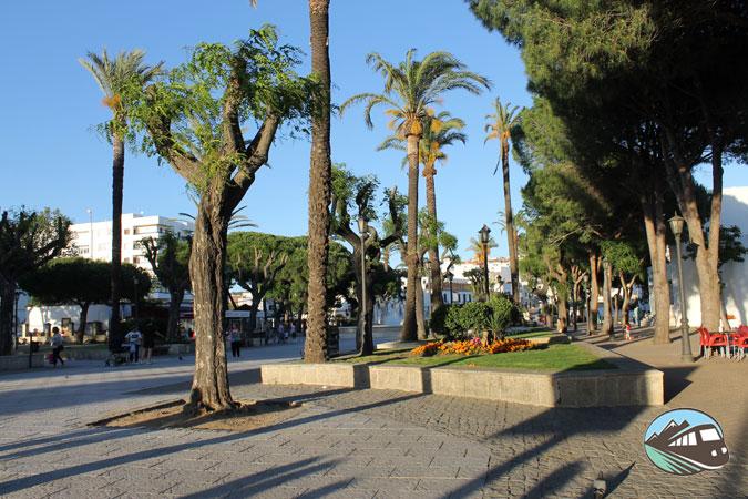 Alameda de Alfonso XI - San Roque