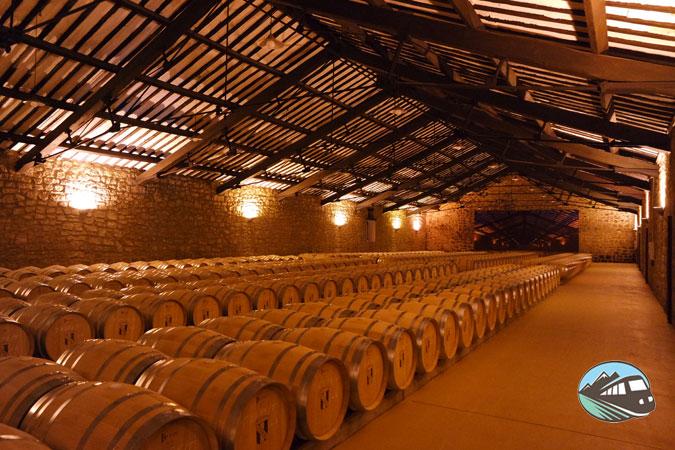Sala barricas CVNE