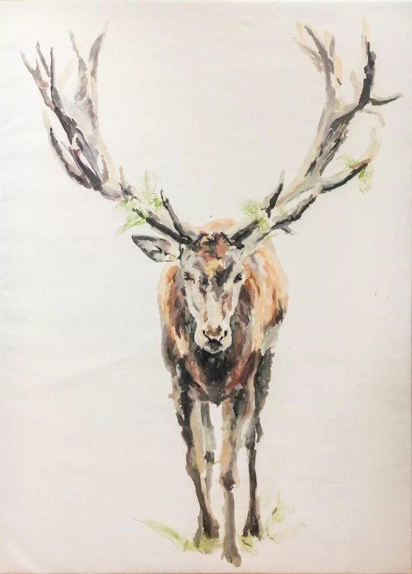 great deer painting animal portrait on white background, realism
