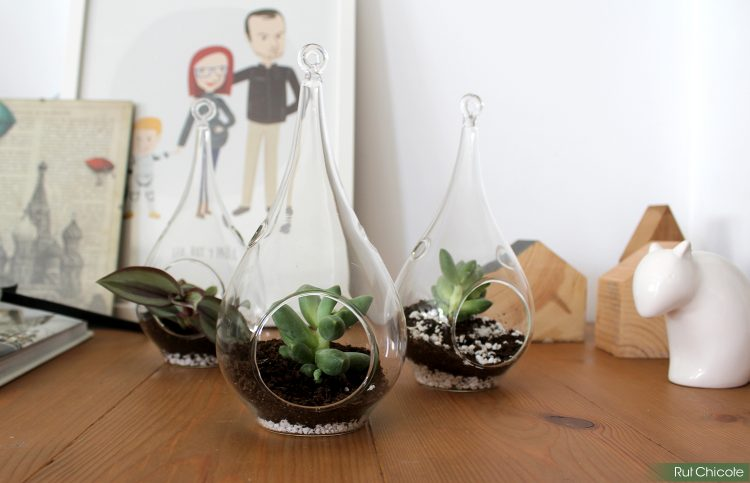 mini-jardines-de-cristal