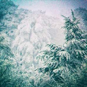 Winter-001-Bearbeitet