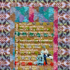 Rona Lear's Exhibition Poster
