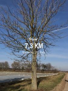 Read more about the article Frühlingswochenende mit Sonne und viel Sport 💪🏼