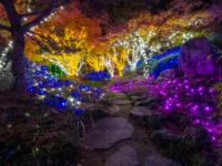 GardenFest of Lights at Lewis Ginter Botanical Garden in Richmond