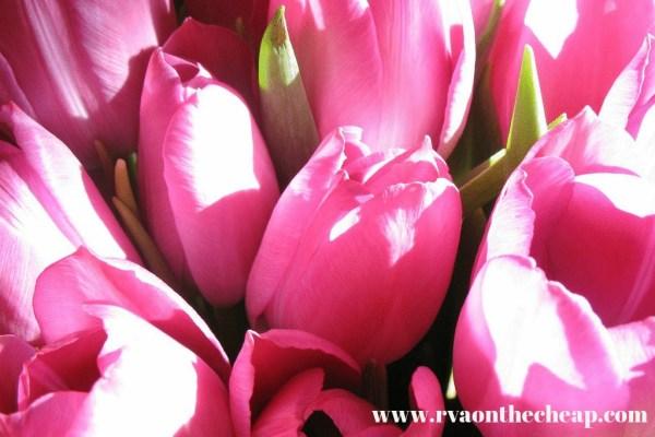 bouquet-15308_1280