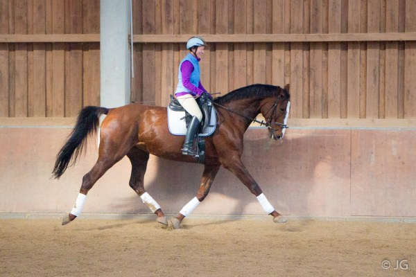 Diamond Girl Reiten 1