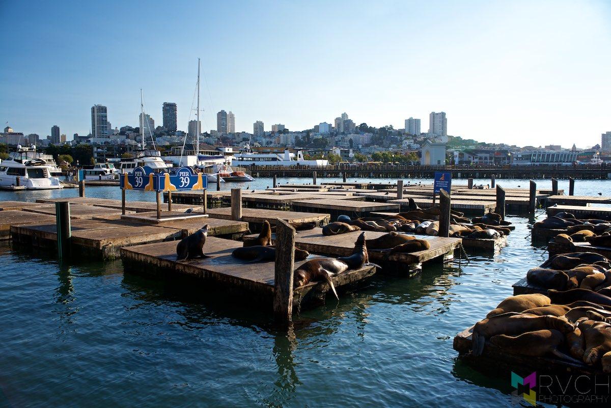 San-Francisco-RCH_0237
