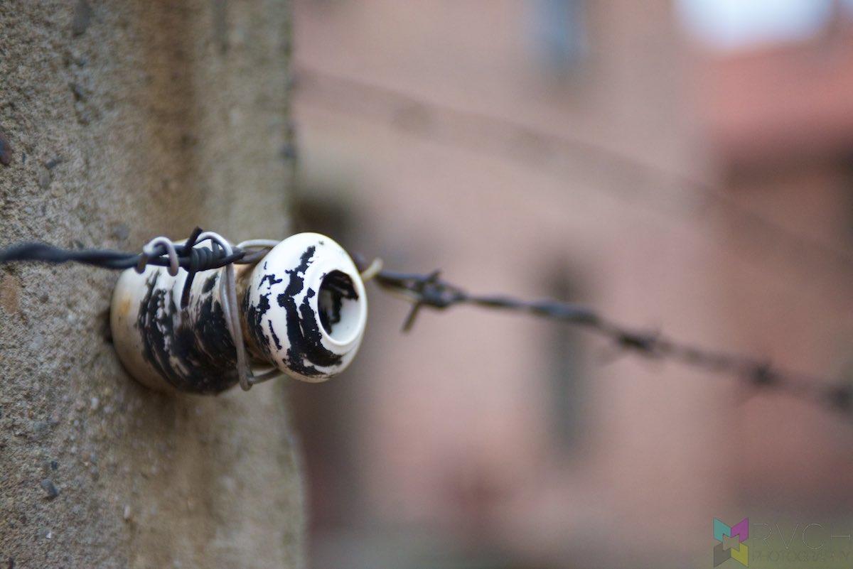 Auschwitz-Birkenau-RCH_1407