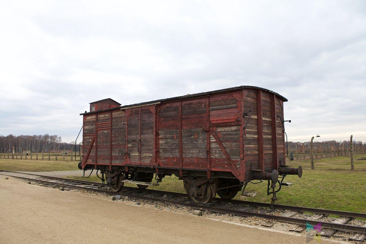 Auschwitz-Birkenau-RCH_1428