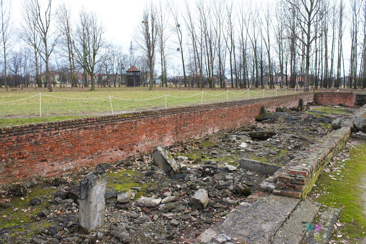 Auschwitz-Birkenau-RCH_1434